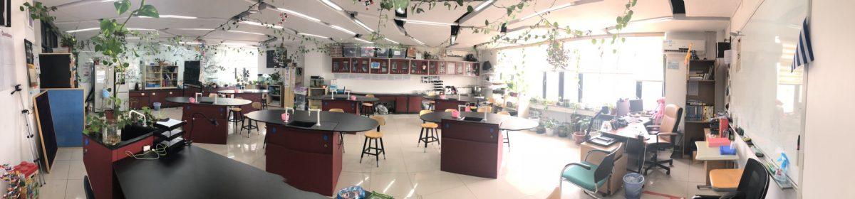 Stories of a Biology teacher